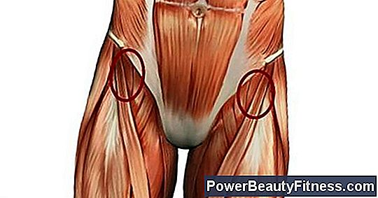 Stretches For The Sartorius Muscle