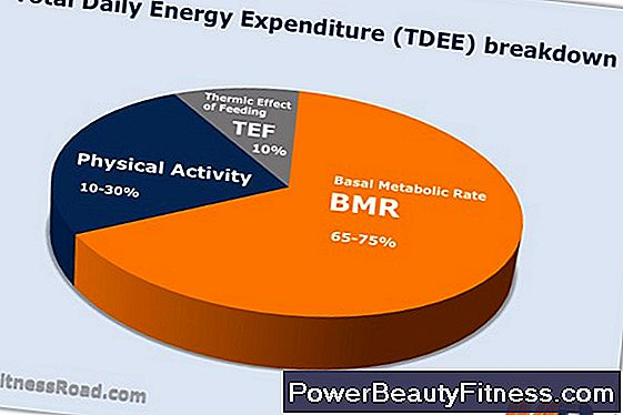 Three Components Of Energy Expenditure