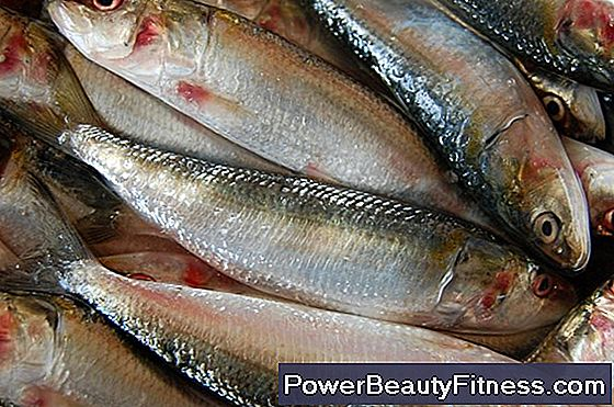 Herring And Nutrition