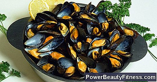 Mussels And Zinc