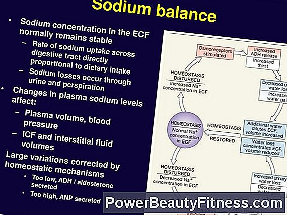 Sodium Levels And Water Intake