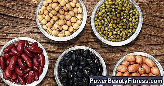 What Food Group Do The Pulses Belong To?