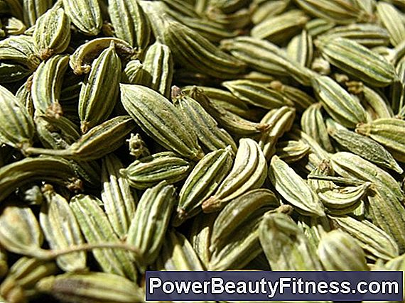 What Are The Benefits Of Fennel Seed Tea?