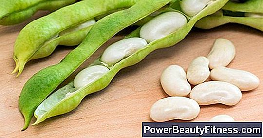 What Are The Benefits Of Northern Beans
