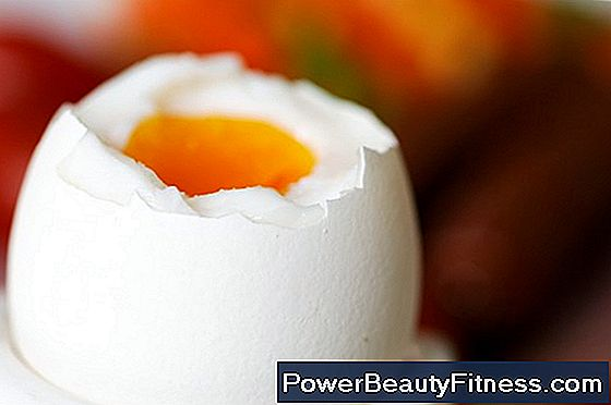 What Part Of The Egg Has The Most Protein?