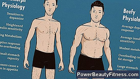 How To Build Muscle If You Are Ectomorph