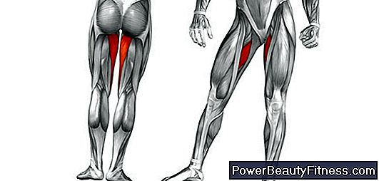 Internal Thigh Adductor Exercises