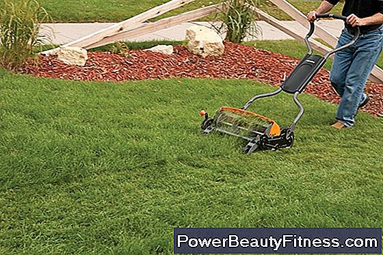 Is Cutting The Lawn An Exercise?