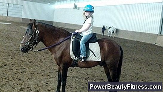 Beginner Trotting Program