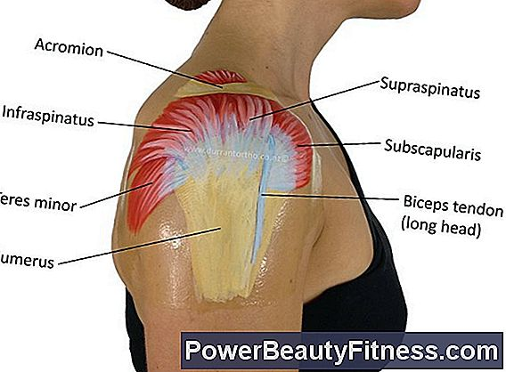 What Are The Causes Of Biceps Tendon Tears?