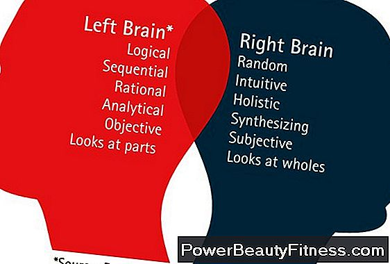 Characteristics Of People Using The Left Side Of The Brain