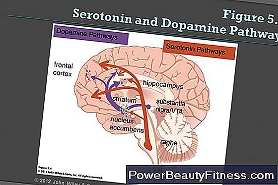 What Are The Causes Of Low Levels Of Dopamine?