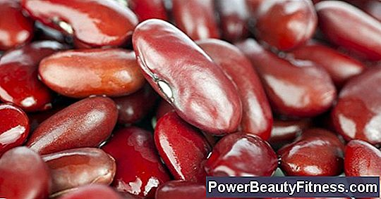 Are Red Beans Toxic?