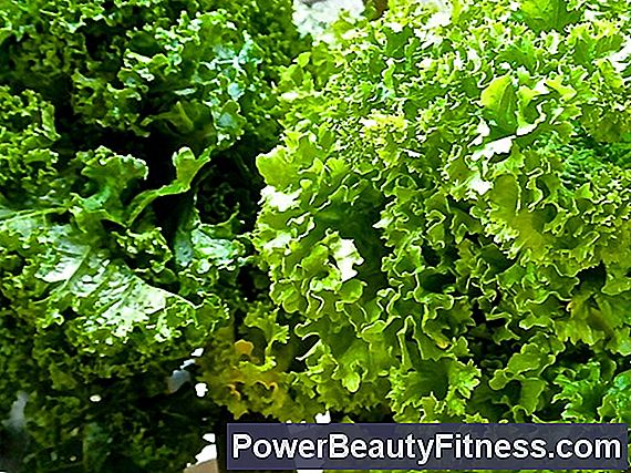 Calcium Content In Kale And Common Cabbage
