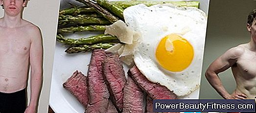 High-Carbohydrate, Low-Protein, Low-Fat Foods