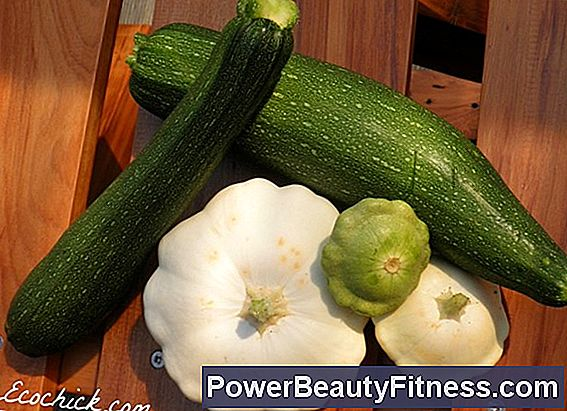 How To Freeze Pumpkin And Zucchini