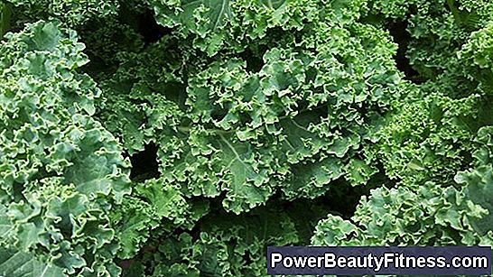 Vitamins In Kale