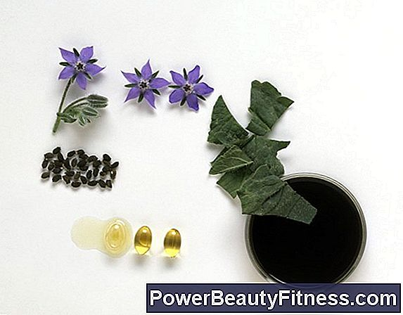 What Are The Benefits Of Borage Oil?