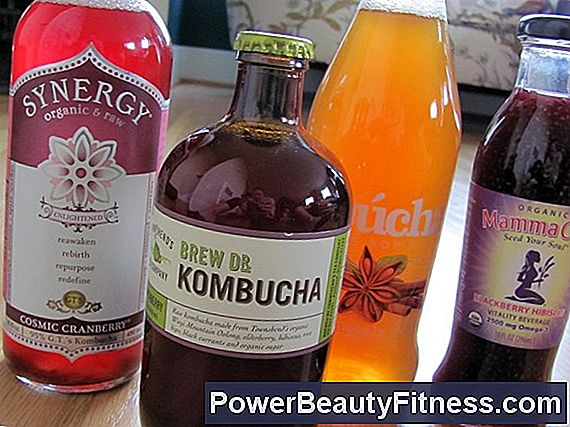 What Is The Kombucha Synergy?