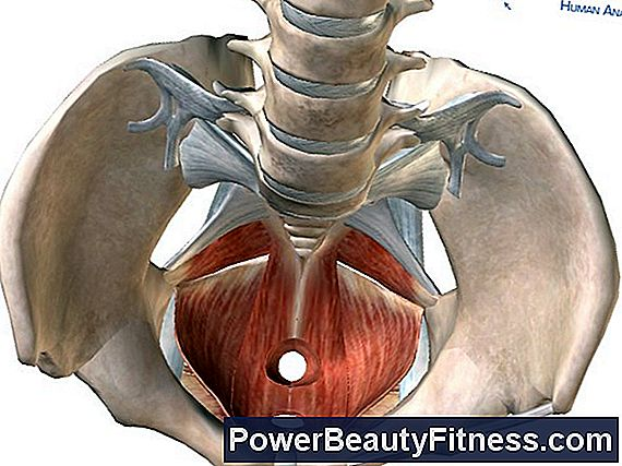 Perineal Muscle Exercises For Men